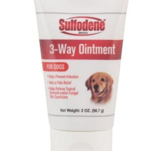 Ointment for Dogs