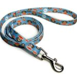 Paul Frank Dog Leash