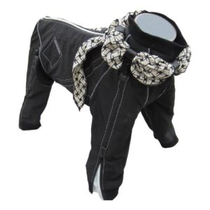 Dog Suit with Scarf