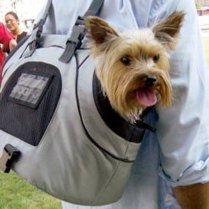 Dog Travel Products