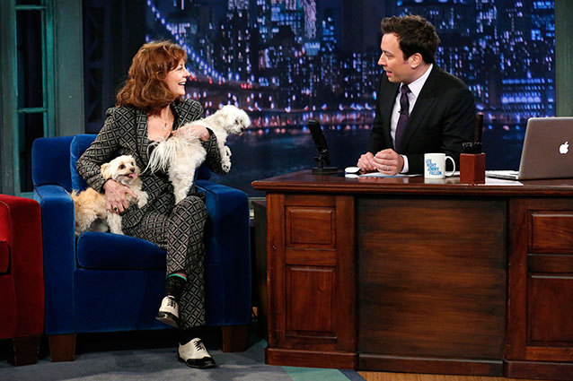 Sarandon brings dog drama to Late Night with Jimmy Fallon Dogsized