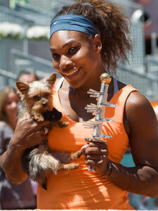 Serena Williams with her dog Chip at the Madrid Open