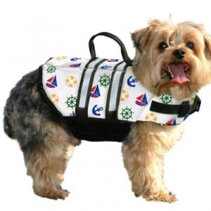 Top 5 Dog Life Jackets for Safety on the Water