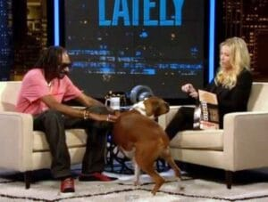 Chelsea Handler Makes Dog Food to Save Dogs Dogsized