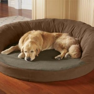 Great Large Dog Beds