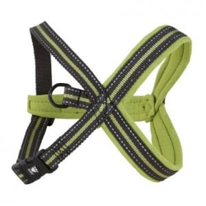 Hurtta Padded Y-Harness