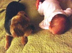 How Does She Do It? Mom Juggles New Baby and Dog Dogsized