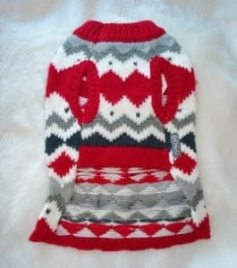 Great Winter Wear, Grooming and Gifts at the Salty Paw Dogsized