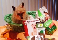 More Contests and Giveaways Winners! Dogsized