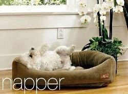 Sophisticated Dog Beds by Jax and Bones Dogsized