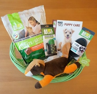 Animal Planet Spring Basket
