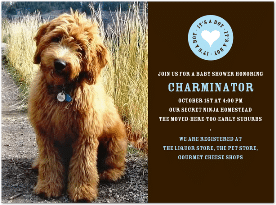 Puppy Shower Invite