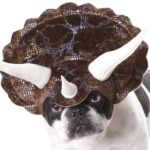 Halloween Dog Costumes Dogsized