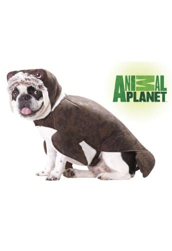 Animal Planet Halloween Costumes for Your Dog