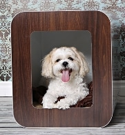 Kooldog Dog House - stylish dog house