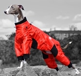 Dog Suits for Fall/Winter Dogsized