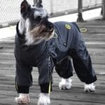 Zippy Cozy Dog Suits