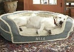 Our Top 4 Favorite Dog Bed Brands Dogsized