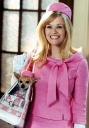 reese - legally blonde