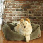 Great Large Dog Beds Dogsized