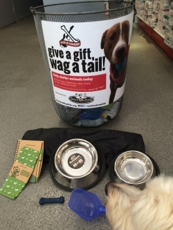 Rock & Rawhide - Collecting Items for Shelters Dogsized