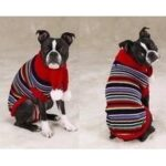 Dog Apparel & Accessories Dogsized