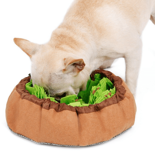5 Reasons to Get a Snuffle Mat for Dogs
