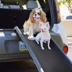 What Is The Best Dog Ramp?