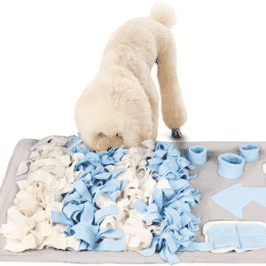 How to Use a Snuffle Mat for Dogs?