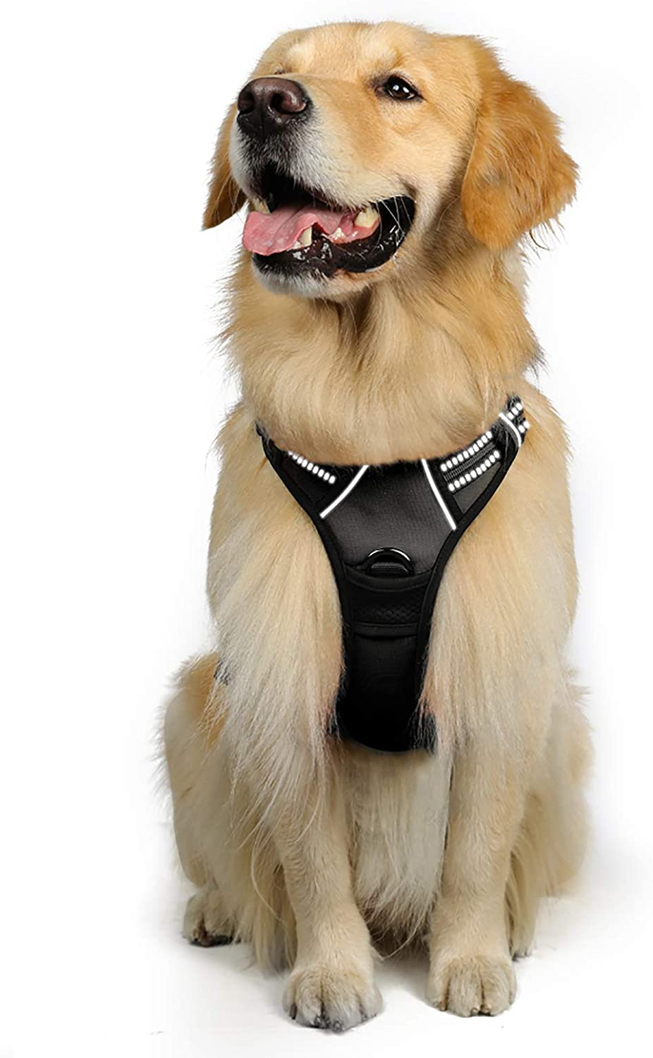 What Is The Best No Pull Dog Harness?